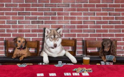 Pitfalls of Planning Poker